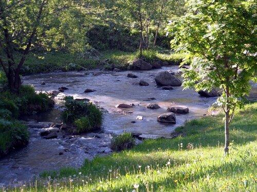 Речка Белокуриха