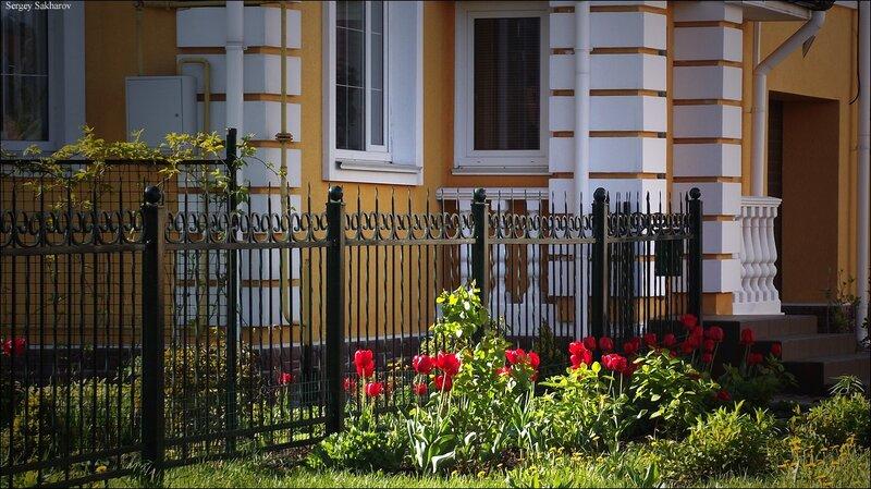http://img-fotki.yandex.ru/get/4406/sergey-2021.13/0_5d6dc_6428ab01_XL.jpg