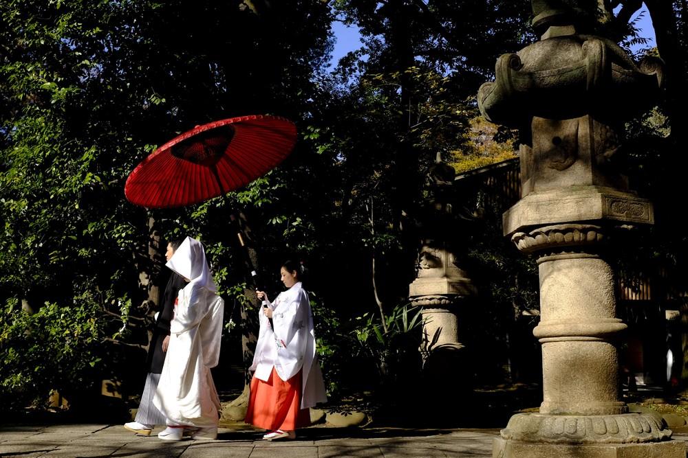 Кадры повседневной жизни из Японии