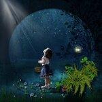 «черничные ночи» 0_6a5be_790cf715_S