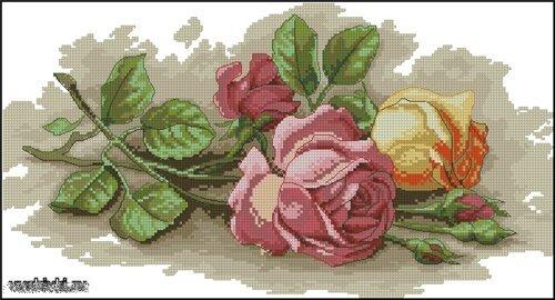 Цветные схемы для вышивания