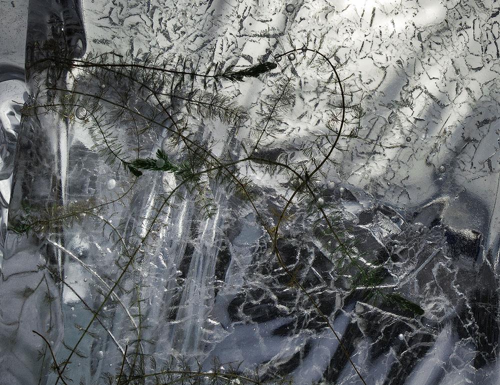 Ледяной натюрморт с естественным освещением
