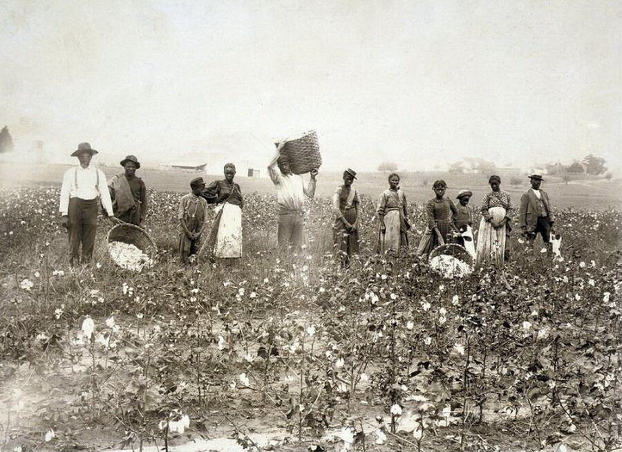 tobacco cotton slavery frq