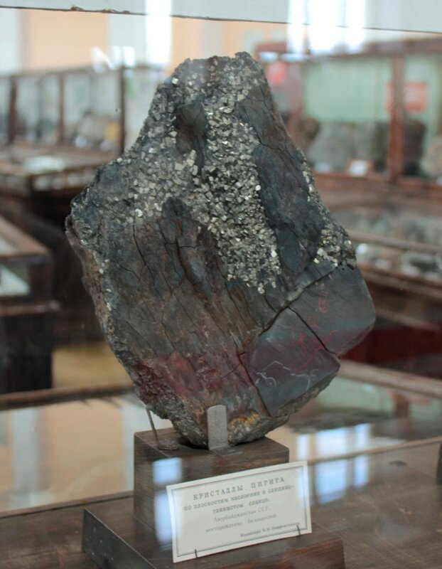Кристаллы пирита по плоскостям наслоения в слюдяно-глинистом сланце