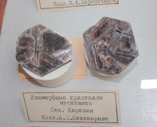 Изоморфные кристаллы мусковита