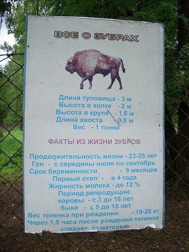 Что привезти из Болгарии в подарок - мужчине или женщине