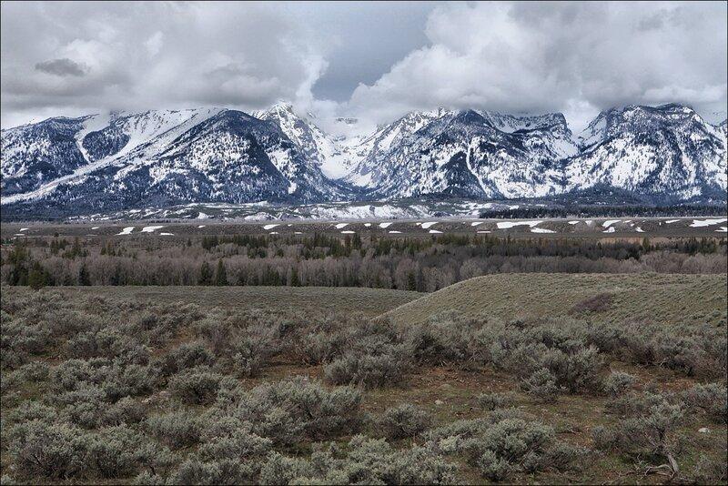 Горы и полынь