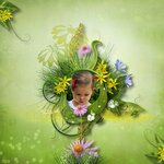 «Неразобранное в Waiting for the spring» 0_61b9a_39c38389_S
