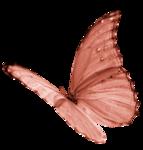 «летающая бабочка»  0_64e82_4ccad509_S