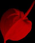 «садовый фэн-шуй» 0_65d53_8e5f9473_S
