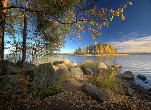 Осень в Монрепо