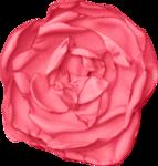 kristen_especiallyforyou_flower01.png