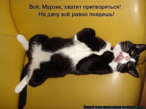 http://img-fotki.yandex.ru/get/4408/124059564.0/0_667d5_bd7f8a65_L.jpg