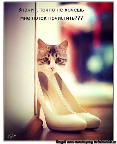 http://img-fotki.yandex.ru/get/4408/124059564.0/0_667d8_4236f694_L.jpg