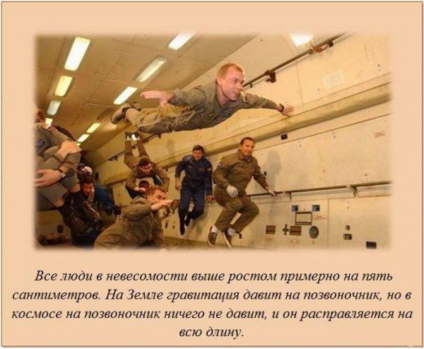 http://img-fotki.yandex.ru/get/4408/130422193.db/0_7553c_17496cf8_orig