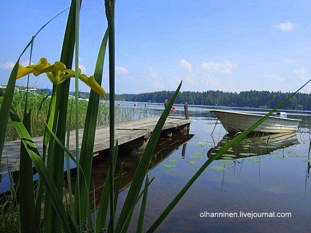 Озеро Уннука в Варкаусе днем, лодка и желтый цветок