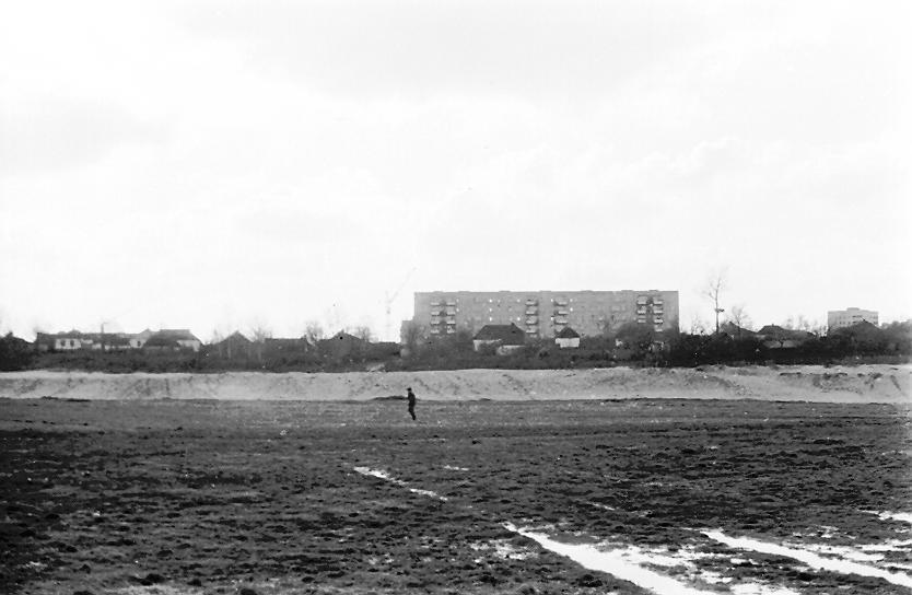 букет курчатов курская область фото семидесятых годов обожает