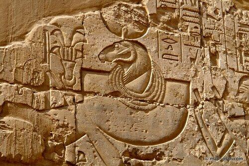 баран, фараон, египет