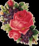 """Схема вышивки  """"Крупная роза """": таблица цветов."""