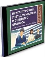 Книга Бухгалтерский учет для малого и среднего бизнеса iso 24Мб