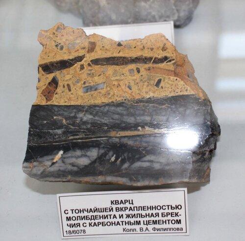 Кварц с тончайшей вкраплённостью молибденита и жильная брекчия с карбонатным цементом