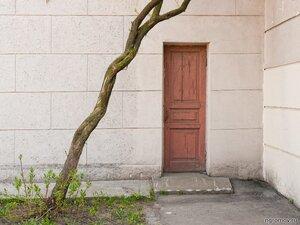 Формализм: кривые и прямые (дверь, дерево, форма)