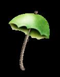 «маленькие сокровища нежности» 0_63b45_5b768d84_S