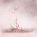 «Heart Flutters» 0_67b11_598a1d32_S