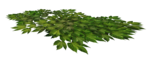 «Scrap kits _the_enchanted_world_» 0_6809e_3fc45386_S