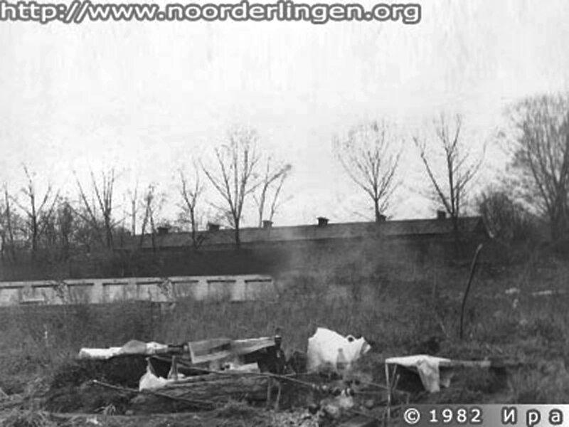 1982 год. Коровник карантина ВДНХ