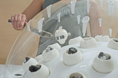 Переработка пластика грибами