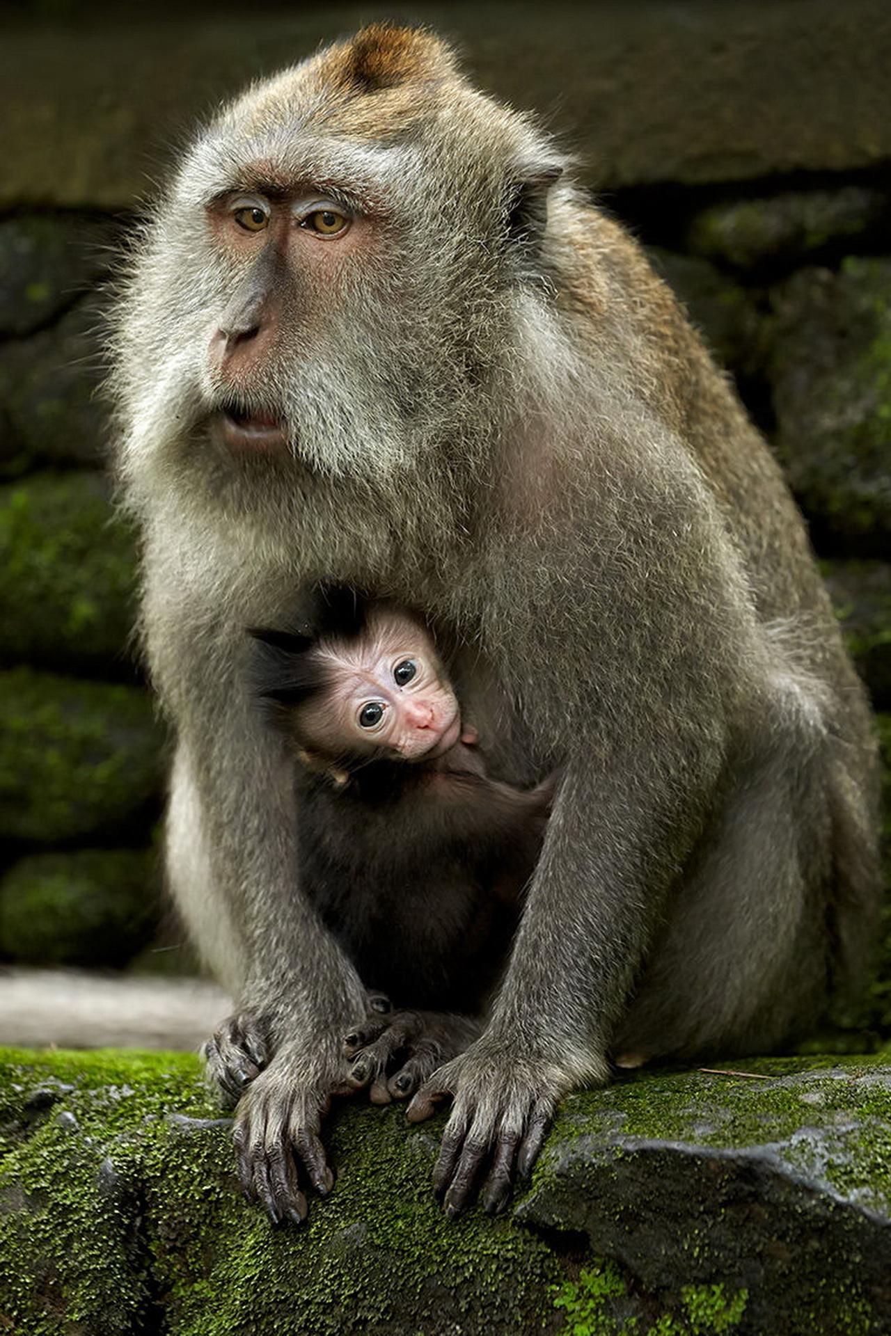 З малюком
