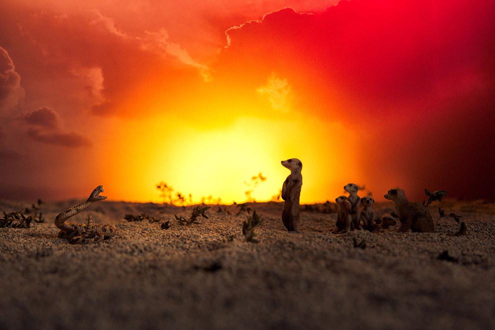 7. Слон на фоне пейзажа из петрушки, розмарина, тамаринда и кокосов. (Фото Julia Wimmerlin):<br