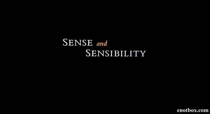 essay sense sensibility The main theme in this novel is the danger of excessive sensibility austen is concerned with the prevalence of the sensitive attitude in the romantic novel w.