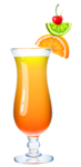 Exotic_Cocktail_PNG_Clipart_Picture.png