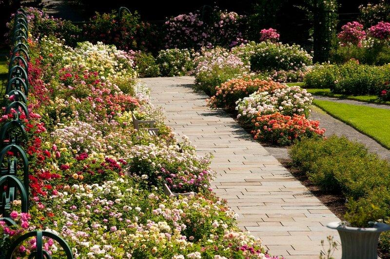 В нью йоркском ботаническом саду