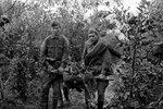 Бойцы несут раненого товарища. Южный фронт, лето 1941 г..jpg