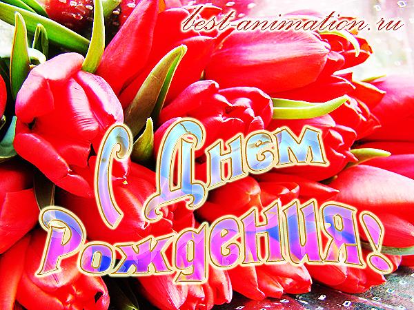 Открытка на День Рождения - Прекрасные тюльпаны