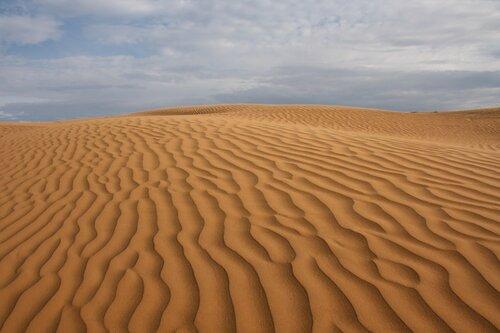 полупустыни и пустыни россии картинки