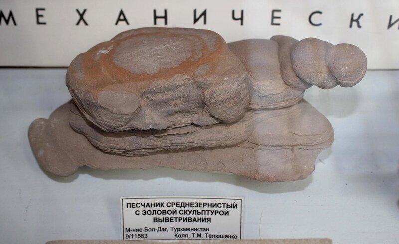 Песчаник среднезернистый с эоловой скульптурой выветривания
