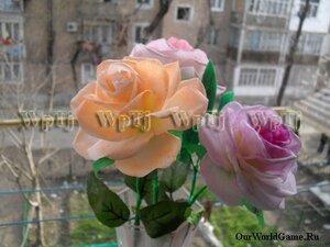 http://img-fotki.yandex.ru/get/4409/69211031.e/0_9facb_32320eed_M.jpg