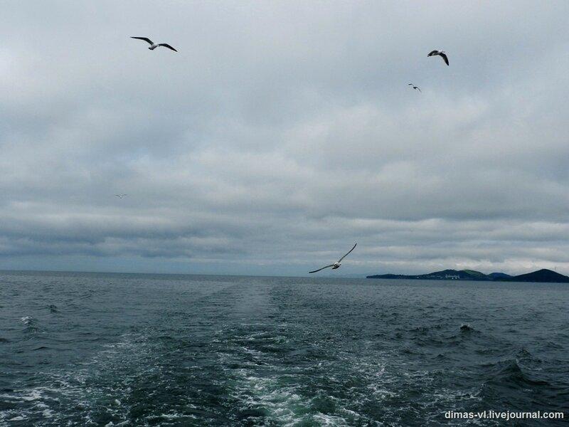 Виды с катера Владивосток - о.Рейнеке 12-июля-2011г