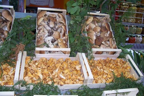 Праздник Грибов Torchiati, Montoro Superiore
