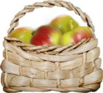 natali_design_apple_basket3b.png