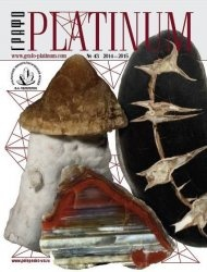 Журнал Графо PLATINUM №43