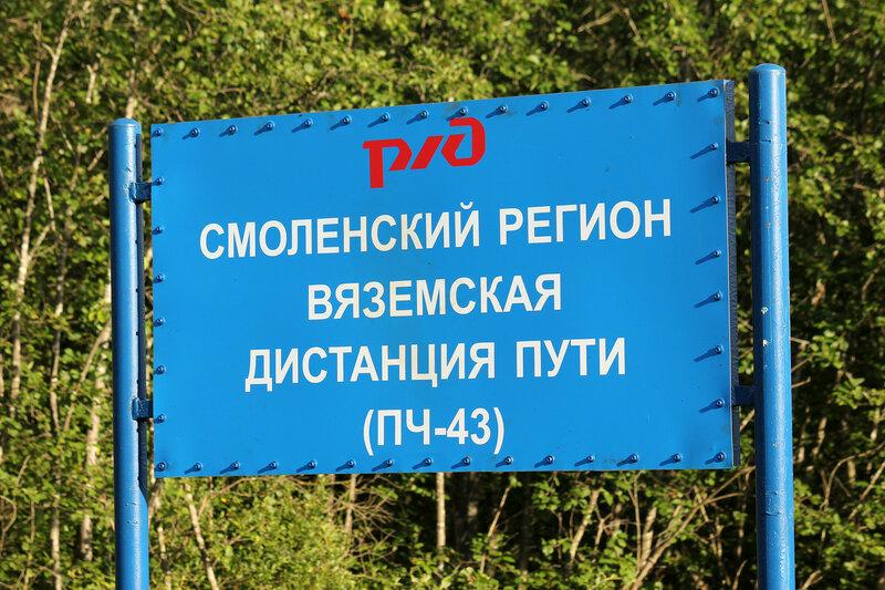 Граница МСК и ОКТ, у станции Осуга, вид на Вязьму