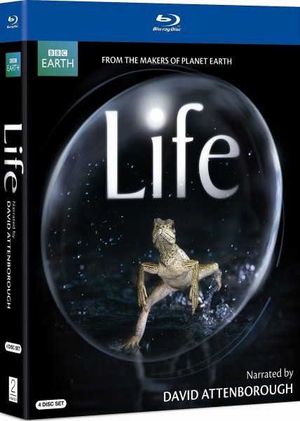 BBC: ������ ����� / BBC: David Attenborough's First Life (2010/BDRip/1080p/720p/HDRip)