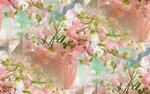 blooms7_1 (23).jpg