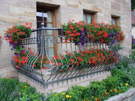 orangereia-na-balkone-21.jpg