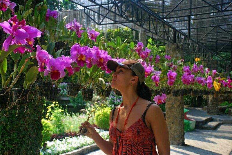 Сад орхидей в паттайе